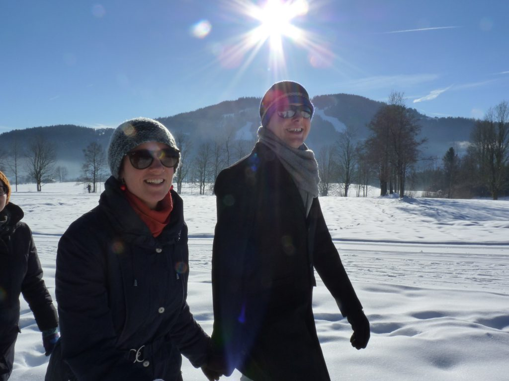codefüchse im Schnee