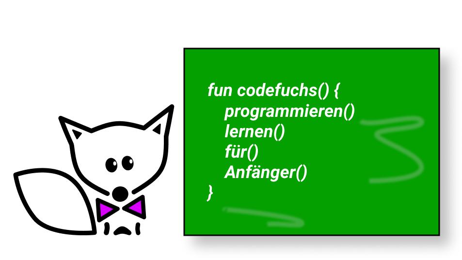 Kurs: Programmieren lernen für Anfänger